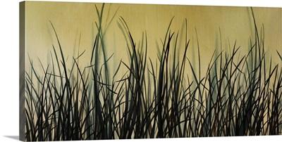 Wetland Brush