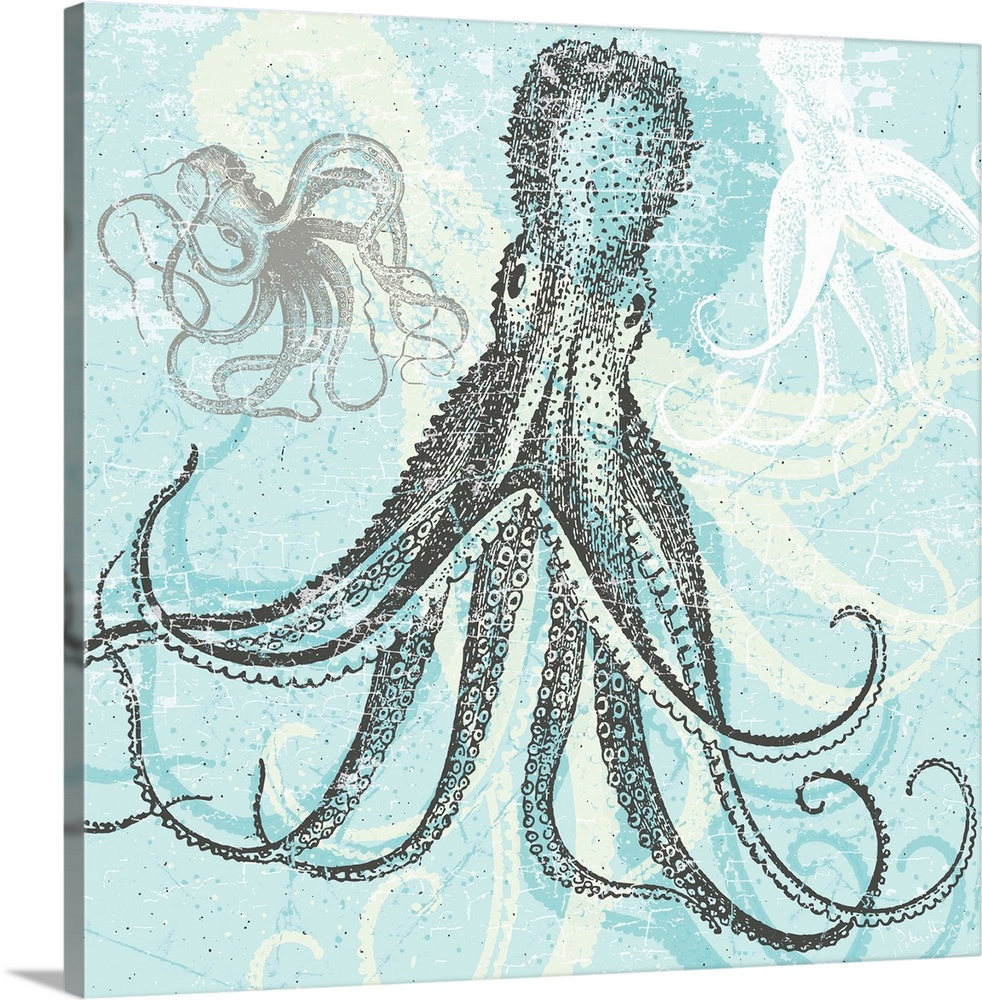Approaching Octopus