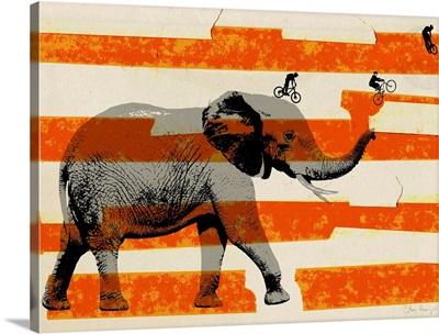 Elephant Trunk Show