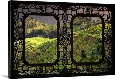Asian Window, Rice Terraces, Longsheng Ping'an, Guangxi