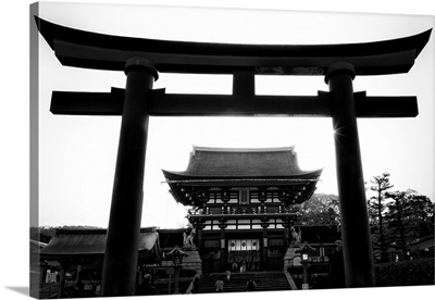 Black And White Japan Collection - Black Torii Temple