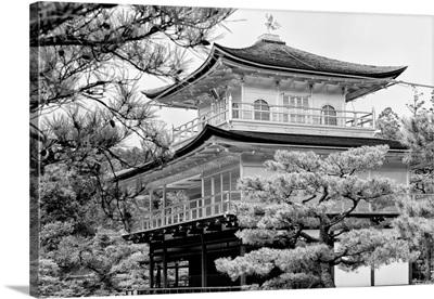 Black And White Japan Collection - Kinkaku-Ji Temple
