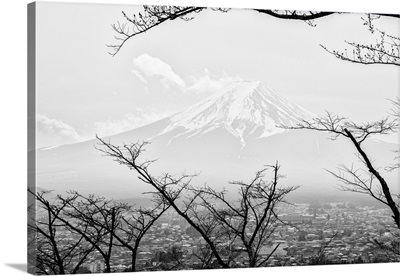 Black And White Japan Collection - Mt. Fuji