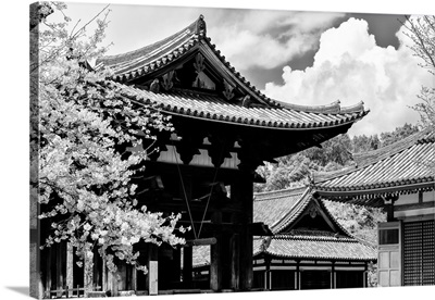 Black And White Japan Collection - Nara Temple