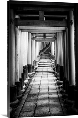 Black And White Japan Collection - Old Torii