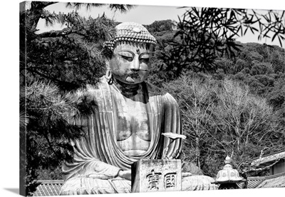Black And White Japan Collection - The Great Buddha