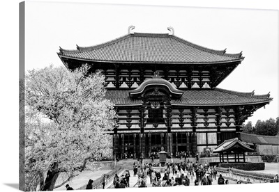 Black And White Japan Collection - Todaiji Temple