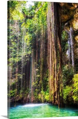 Hanging Roots of Ik-Kil Cenote II