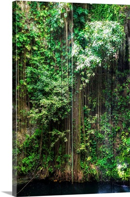 Hanging Roots of Ik-Kil Cenote III