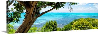 Isla Mujeres Coastline III
