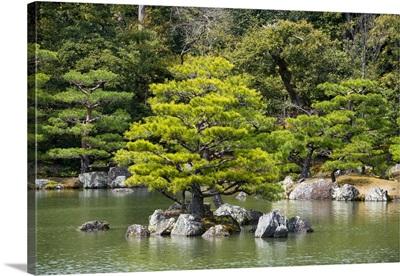 Japan Rising Sun Collection - Alone on the Island III