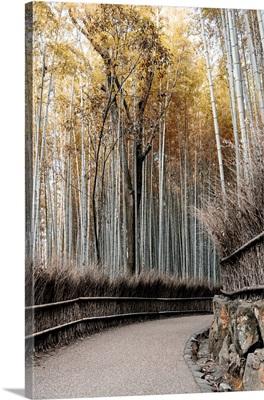 Japan Rising Sun Collection - Bamboo Path II