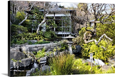 Japan Rising Sun Collection - Japanese Garden II