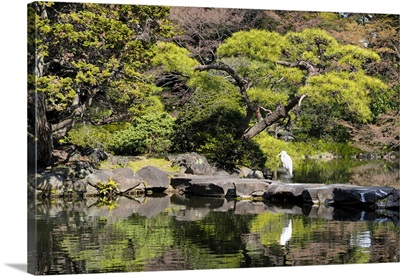 Japan Rising Sun Collection - Japanese Lake
