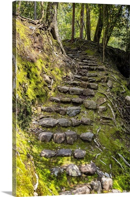 Japan Rising Sun Collection - Natural Staircase II