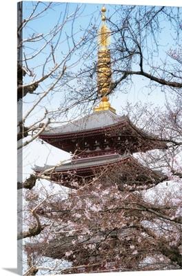 Japan Rising Sun Collection - Pagoda Senjo-ji