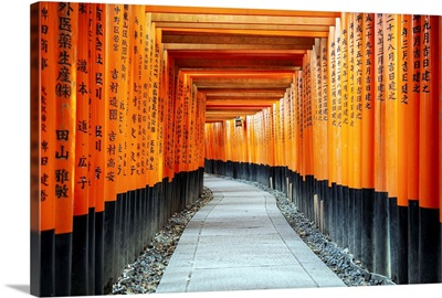 Japan Rising Sun Collection - Torii Gates at Fushimi Inari Shrine