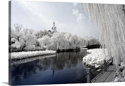 Lotus Lake, Another Look Series