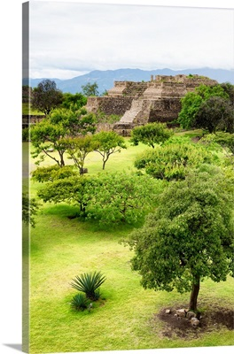Mayan Temple of Monte Alban II