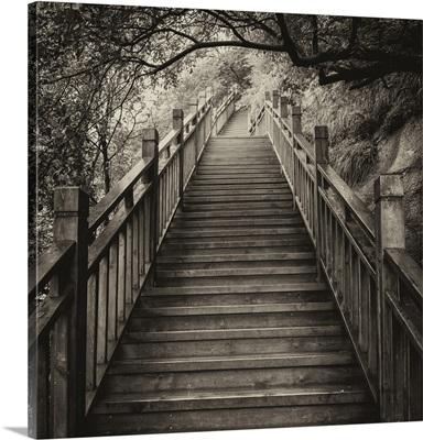 Mountain Wooden Staircase