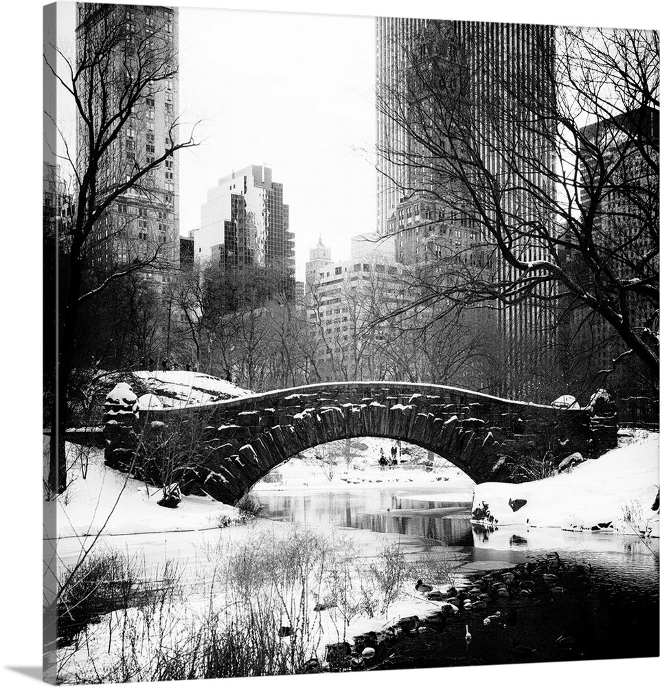 New York City Central Park Under Snow Wall Art