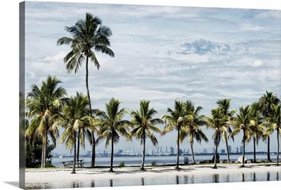 Paradisaical Beach overlooking Downtown Miami