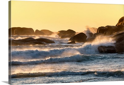 Powerful Ocean Wave at Sunset