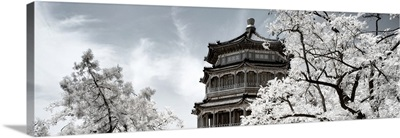 Summer Palace, Another Look Series