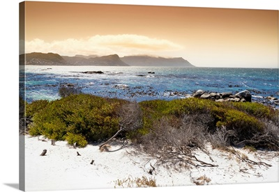 Sunset from Boulders Beach