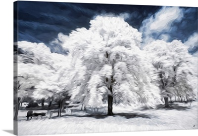 The White Tree, Oil Painting Series