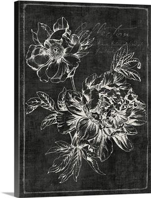Black Botanical I