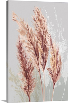 Blushing Pomp Grass II