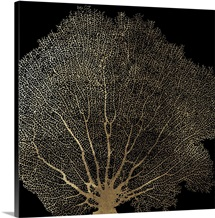 Honeycomb Coral II