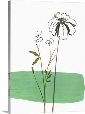 Little Herb II