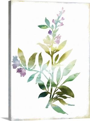 Summer Botanical III
