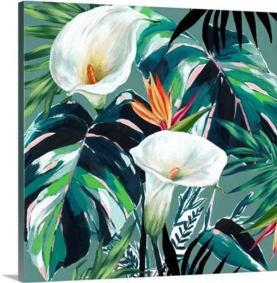 White Lily Paradise