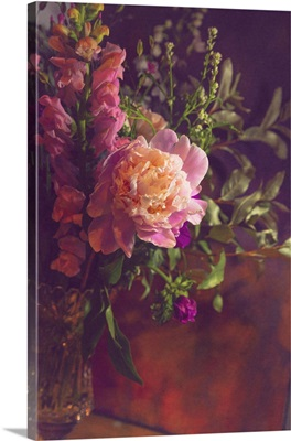 Chiaroscuro Blooms