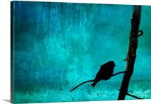 Songbirds Soliloquy