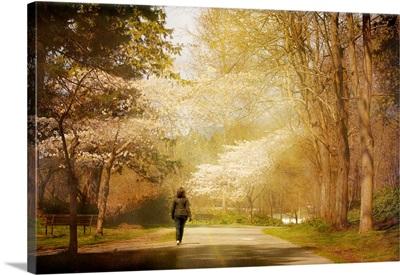 Strolling In Stanley Park