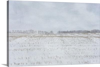 Stuble Fields