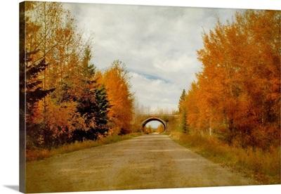 The Railway Bridge