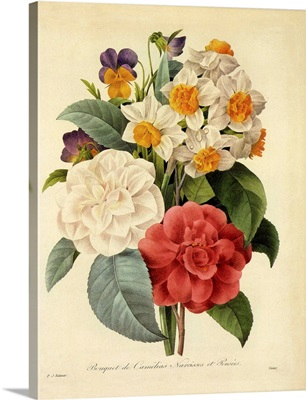 Camellias, Narcissus and Pansies