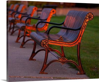 Bronze Benches