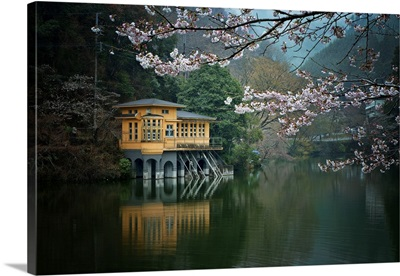 Lakeside in blossoms
