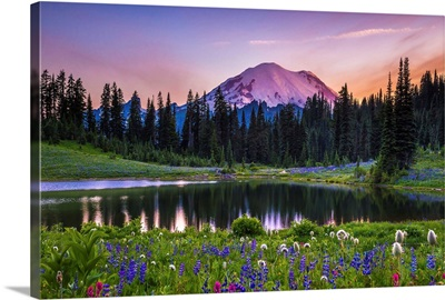 Wildflowers by Tipsoo Lake