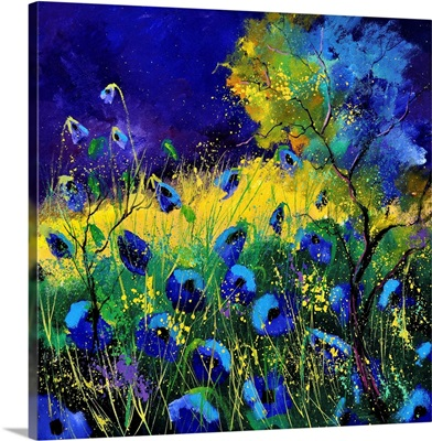 Blue Poppies 7741