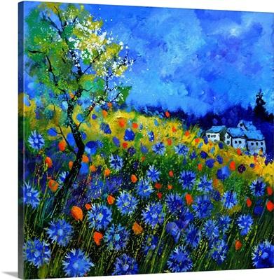 Field Flowers 776150