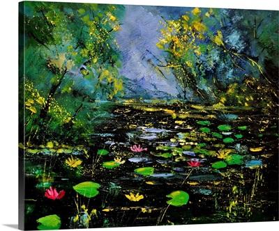 Pond 561170