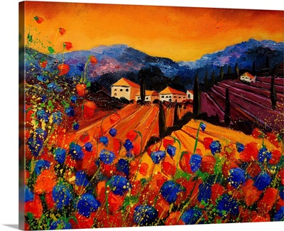 Tuscany Poppies 45 Bis