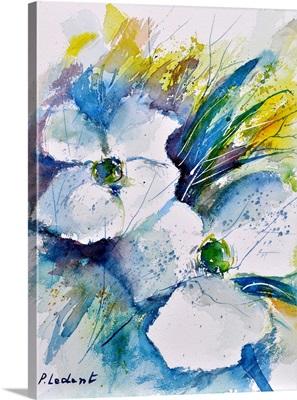 Watercolor 017070